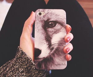 iphone, fox, and wolf image