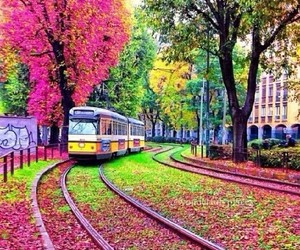 train, nature, and pink image