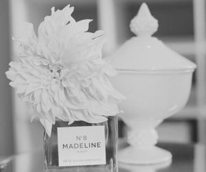 perfume, flowers, and madeline image