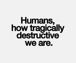 quotes, humans, and destructive image