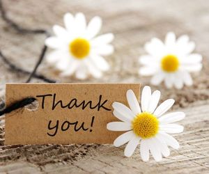 flowers, thank you, and daisy image