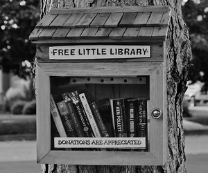 book, library, and free image