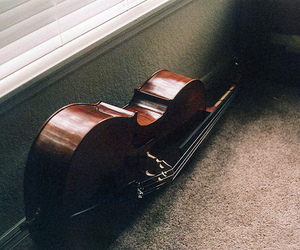 cello, vintage, and photography image