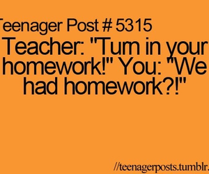 funny, teenager post, and homework image