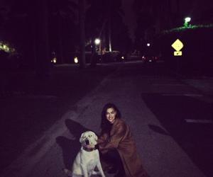 dog and irina shayk image