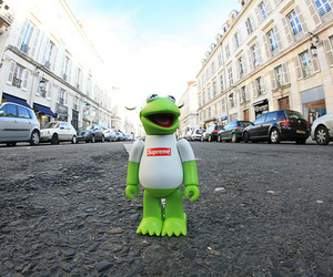 frog, beautiful, and street image