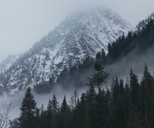 mountains, nature, and forest image