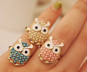 owl and rings image