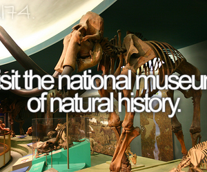 museum and bucket list image