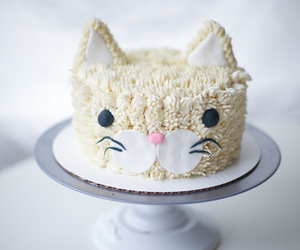 cake, cat, and food image