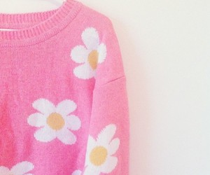 pink, daisy, and sweater image