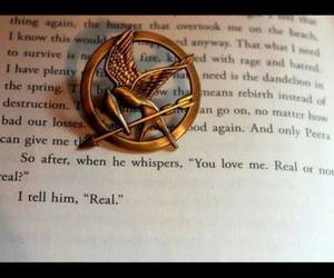 love, mockingjay, and quote image