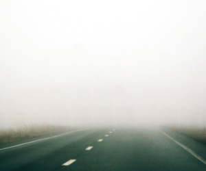 fog and road image