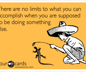 funny, true, and ecards image
