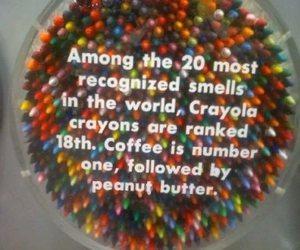crayon, coffee, and crayola image