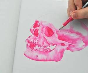 pink, skull, and drawing image