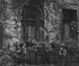 flowers, balcony, and vintage image