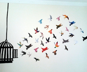 birds, free, and cage image