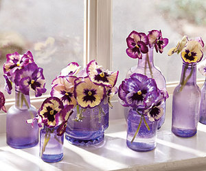flowers, purple, and bottles image