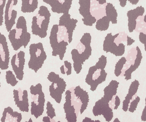 leopard, wallpaper, and leapord image