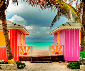beach, bikini, and hawaii image