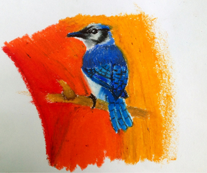 bird, drawing, and oil image