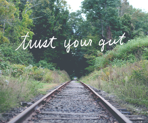trust your gut image