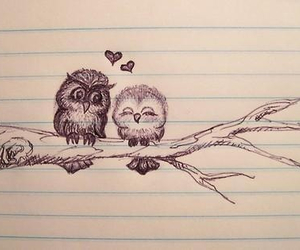love, owl, and drawing image