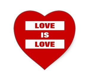 lgbt, love is love, and love image