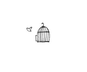 black and white, cage, and fly image