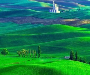 beauty, green, and hills image