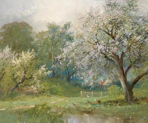 art, landscape, and nature image
