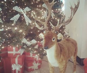 christmas tree, new year, and reindeer image
