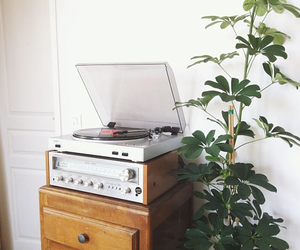 inspiration, music, and plant image