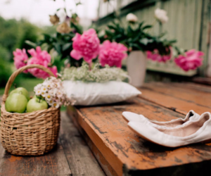 flowers, beautiful, and apple image