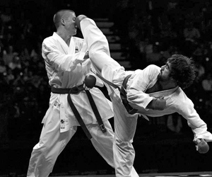 karate and wkf image