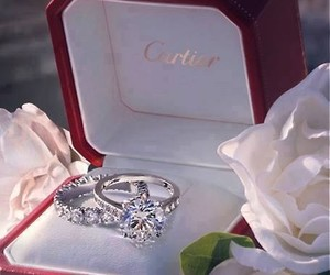 rings, cartier, and ring image
