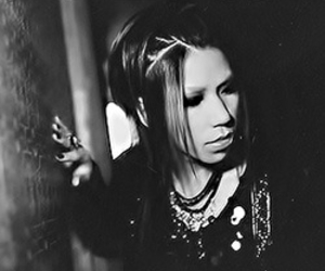 aoi, handsome, and the gazette image