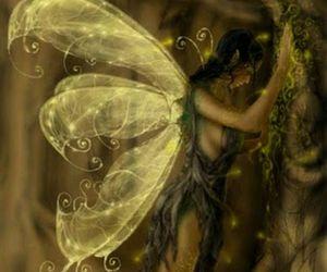 fairy magic fantasy wings image
