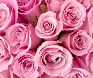 pink, pretty, and love image