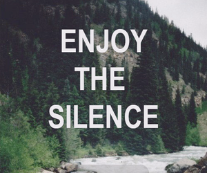 forest, enjoy the silence, and mountain image