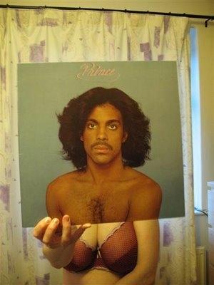 photo and vinyl image
