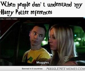 big bang, sheldon, and muggles image