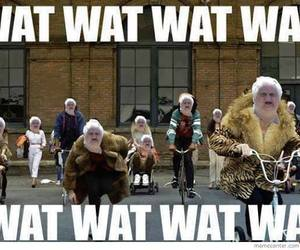 wat, funny, and thrift shop image