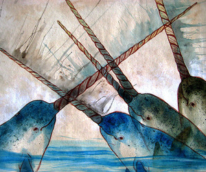 narwhal and art image