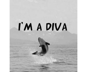 diva, whale, and ocean image