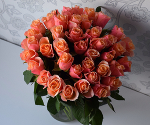 beautiful, roses, and love image