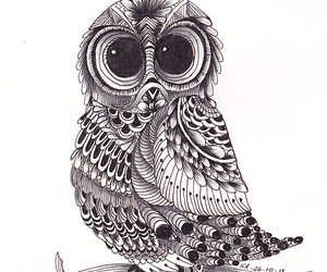 black, drawing, and owl image