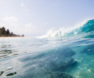 amazing, sea, and beach image