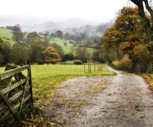 fall and england image